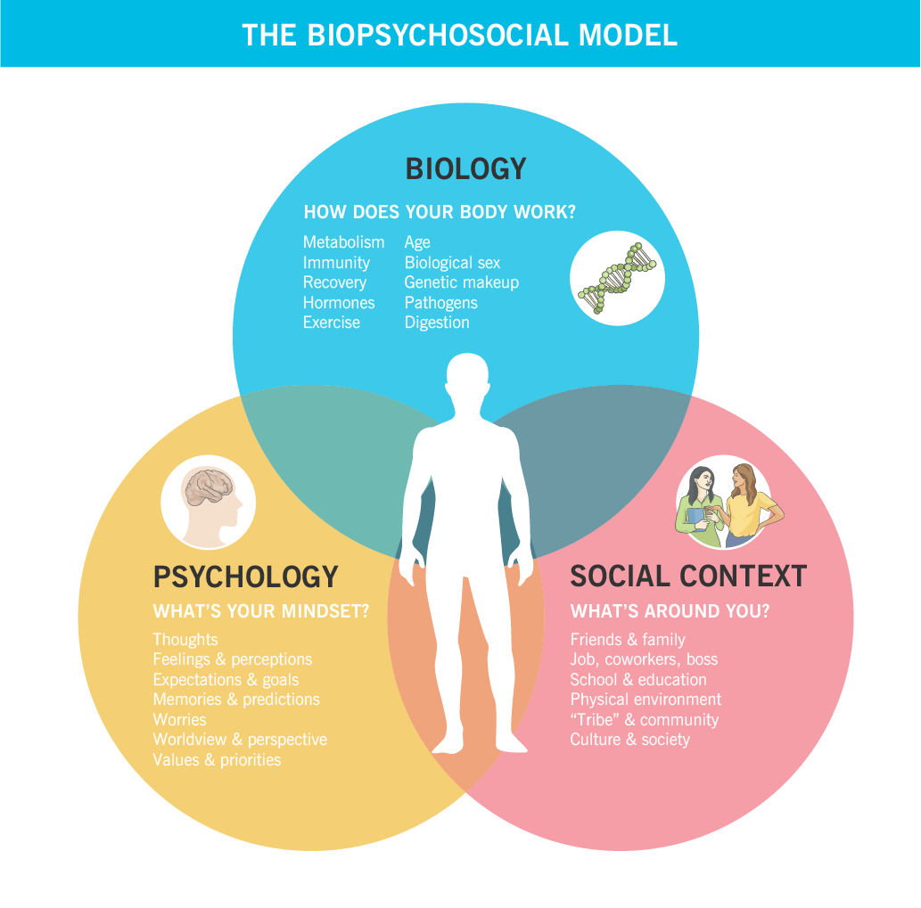 A Venn diagram showing how the biopsychosocial model works, and what areas of life are included in the three areas: biology, psychology, and social context.